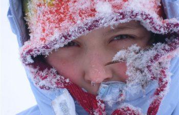 snowy_024-1